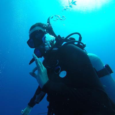 Een vrijwilliger gebruikt een handsignaal tijdens een duikonderzoek op het vrijwilligersproject natuurbehoud voor jongeren in Belize.